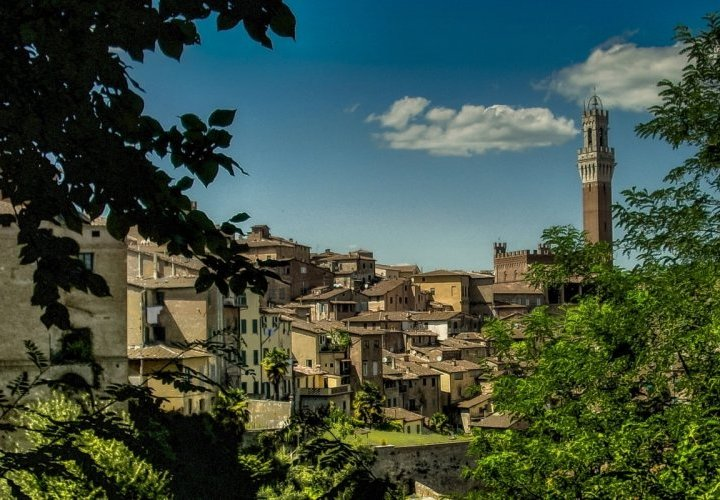 Discovery of the towns of Siena and San Gimignano