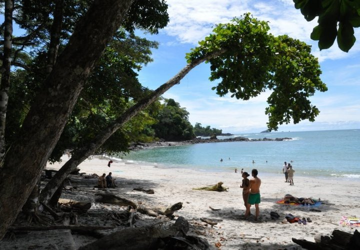 Travel to the warm coast of the Central Pacific reaching Manuel Antonio National Park