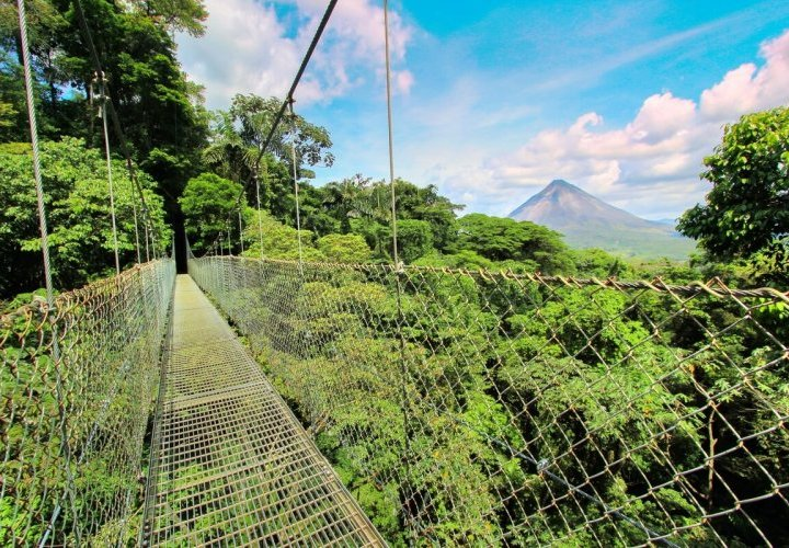 Yoga class and hike in Mistico Arenal Hanging Bridges Park