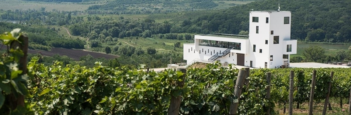 Moldova Wine and Food Experience with lunch at the wineries