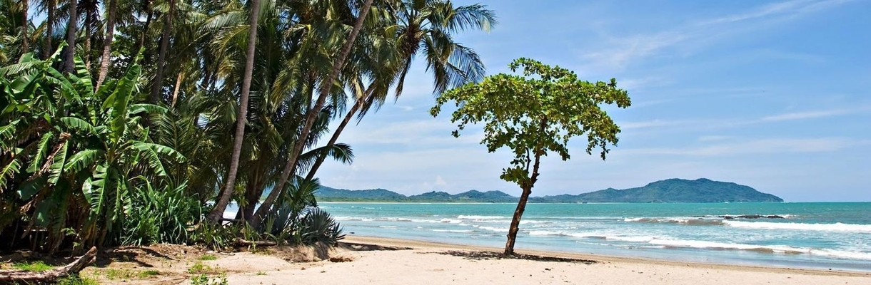 Costa Rica Tour to the Caribbean (Puerto Viejo) and Pacific coasts (Tamarindo beach)